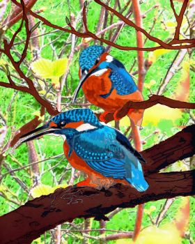 Paired Kingfishers Drawing by merearthling