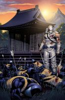 Snake Eyes Storm Shadow 21 cover by spidermanfan2099