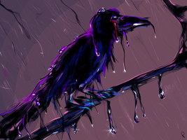 Crow by Rommeu