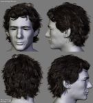 Ayrton Senna Hair by Woodys3d