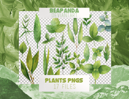 Renders 035 // Plants Pngs by BEAPANDA