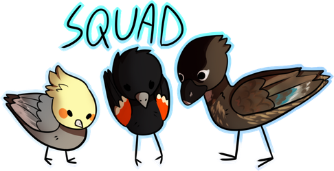 Birbs by yudevils