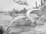 'Colorado: Late Jurassic' CU Pteranodon 2 by she1badelf
