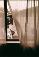 21... Curtain View by seraphinx