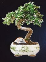 bonsai 2 by bluespectralmonkey