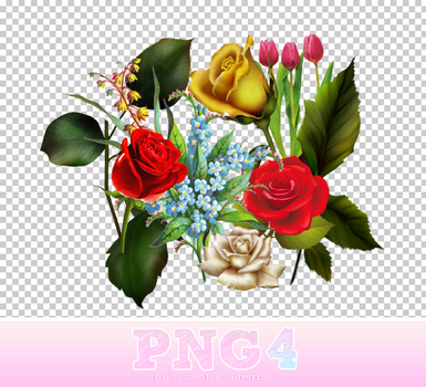 PNG 4 by 1-ShInYGiRL-1