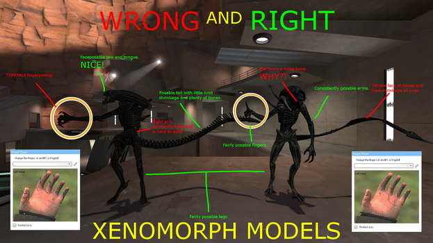 Garry's Mod:  WRONG AND RIGHT - XENOMORPH MODELS by T-rexHunter2000