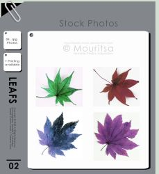 Photo Pack - Colorful Leafs by iMouritsa
