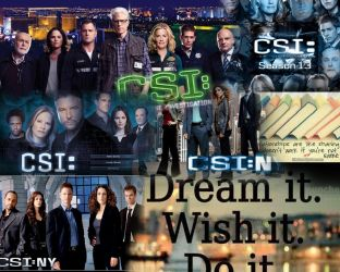 csi and mixed by makeitsnappy25