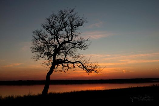 Texas Sunset by lanephotography