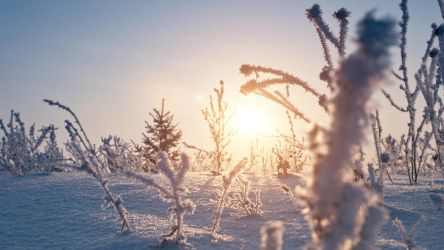 Sun over snow by Belolis