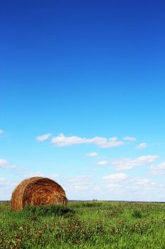 Hay Bale on the Prairie by Joe-Lynn-Design