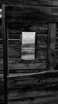 Gros Ventre Pioneer Cabin, Grand Tetons B/W by DestrctiveEmily