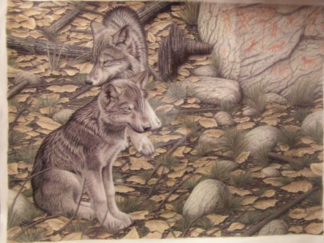 Wolf pups, Pictographs by Towinckdesigns