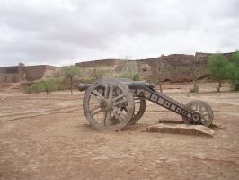 Wooden Cannon in Derawar Fort by zamir