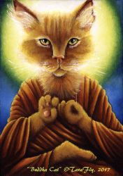 Buddha Cat by TaraFlyArt