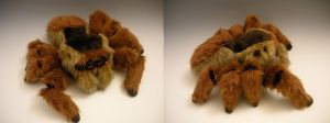 Jumping Spider Plush by WhittyKitty