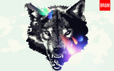 Black And White Wolf by Espador