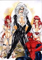 Cat Black, Red Sonja, Mary Jane an spider man by ednardo666
