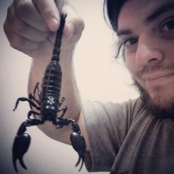 Scorpion!! New Pet!!! by MadHatterMuscaria