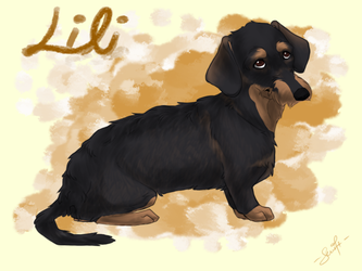 pet trade - Lili by swift-whippet