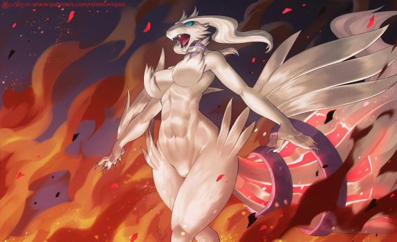 Reshiram by playfurry