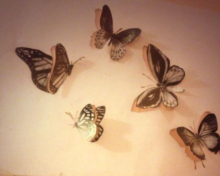 Photorealism butterflies by Hidingbehingmywork