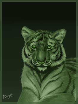 Green Tiger - Beast Boy by RageInflictor