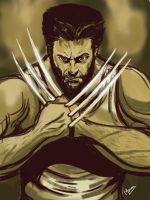Happy birthday Wolverine - drawn in my iPad by mrinal-rai