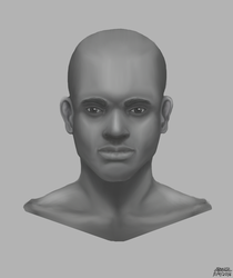 Refined Portrait from Form Study by SpazzStudios