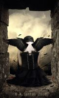 DARK ANGEL. by Lady-Lilith666