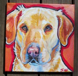 pet portrait yellow lab by jupiterjenny