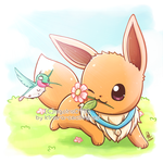 Commission - Eevee and Flit by Kirara-CecilVenes