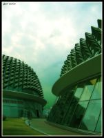 giant durians by fleng