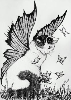 Cat by legadema666
