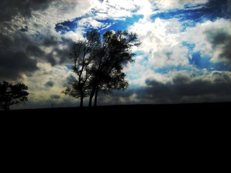 The loneliness by paganmaria