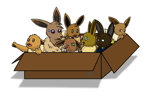 Box of Eevee's by RymNotrim