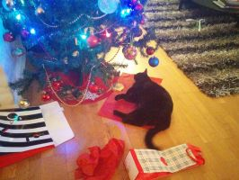 Le christmas tree,le paper and le cat by ShishiNoSeirei