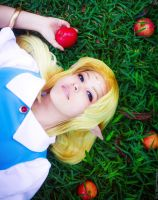 Apples by LayzeMichelle