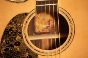 Takamine LTD 2010 - Soundhole by pwuerrer