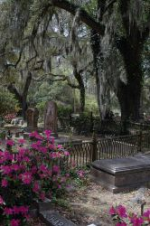 Cemetery 50 by Peace-of-Art