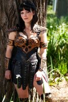 The Warrior Princess by queencattabby