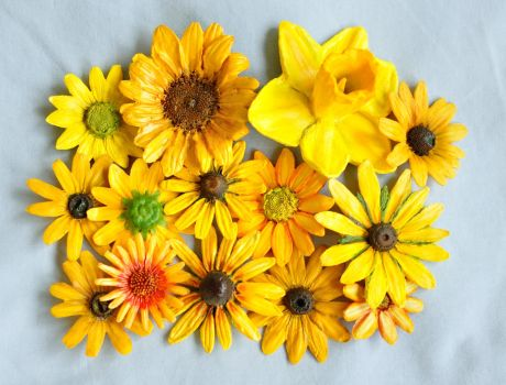 Yellow Flower Magnets by Butterflyhornet