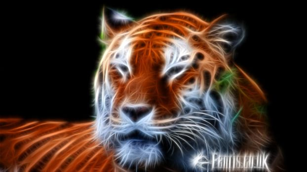 Fractal Tiger #02 by FenrisOswin