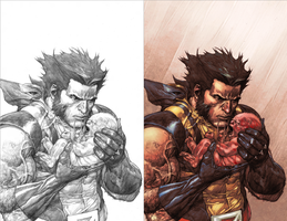 Wolverine Colors by kathrynlayno