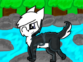 Thunderpaw! [Around the River] by RubytheCat12