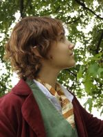 Bilbo Baggins - What's that up there? II by BouSaitou1995