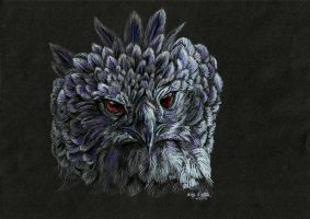 Harpy Eagle by lupinemoonfeather