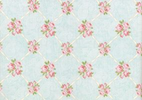 Floral paper stock 2 by laurengee