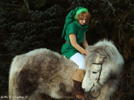 Link OoS - Hey! You are not Epona! by Grethe--B